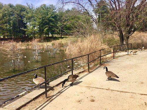 A safe, clean, multi-purpose park