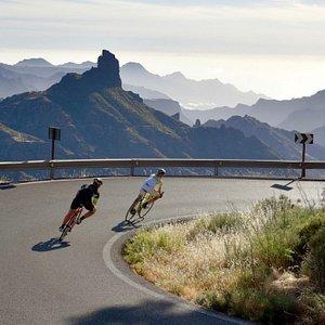 Free Motion Bikecenter - Puerto de Mogán
