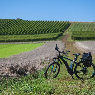 Ebike riding through the South Limburg hills.