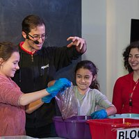 Take part in our interactive science shows!