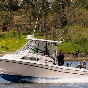 Headed back to Tofino, British Columbia after one of our salmon fishing and Hot Springs Cove charters.