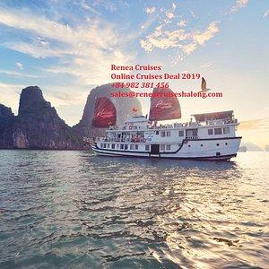 Renea Cruises online deal 2019