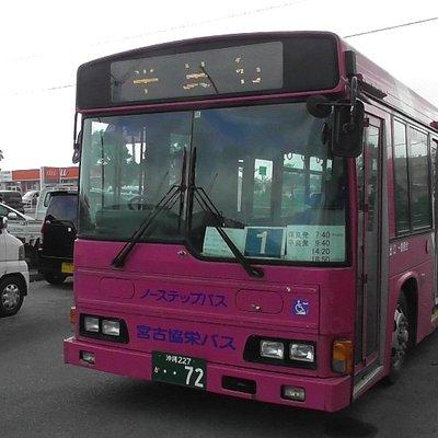 ピンク色のバスでした