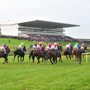 Munster national - race for the last fence