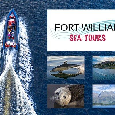 Fort William Sea Tours - Stunning Scenery and Wonderful Wildlife!