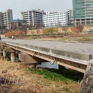 Salgoji Bridge