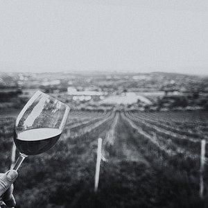 Maravillosas vistas acompañada de un vino ecológico excelente, Muchas veces lo que tenemos al rededor es mas que suficiente, solo tenemos que pararnos a darnos cuenta.