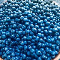 Patts blueberry bounty