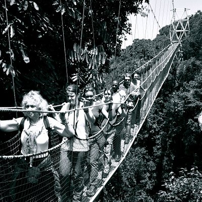 We had the delight of enjoying the Canopy walk Experience at Nyungwe National Park. That canopy walk is 70 meters high, the third in the world after Malaysia and Nigeria
