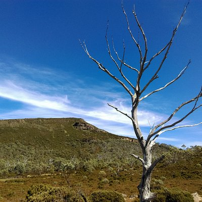 Mt Rufus - Lake St Clair - Tasmania