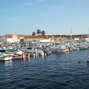 The marina at Le Brusc