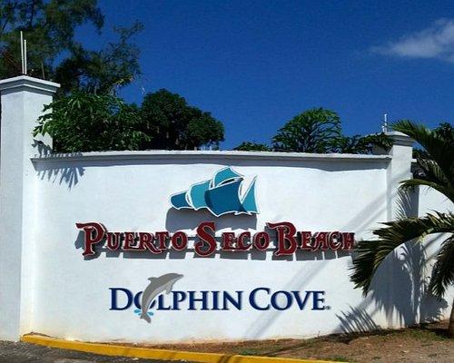 ¡ Bienvenidos a Dolphin Cove Puerto Seco Beach !
