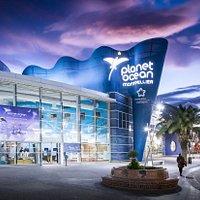 Prêt pour une exploration inoubliable à Planet Ocean Montpellier ?