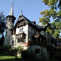 Die Villa Paulick vom Garten am Ufer des Attersees