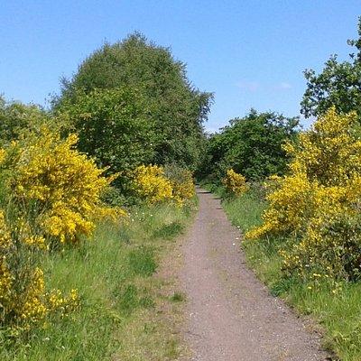 Heading towards Brownhills