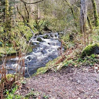 Reelig Glen Highland Walk