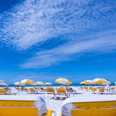 Our sugar white sand and tranquil, crystal clear Gulf waters create a gorgeous and captivating environment for visitors. An average of 361 days of sunshine per year and a temperate, mild climate make for the ideal beachside paradise. Palm trees swaying in the gentle breeze lull lovers while exciting water sports satisfy the adventurous crowd and full time lifeguards ensure children of all ages can swim and play freely.