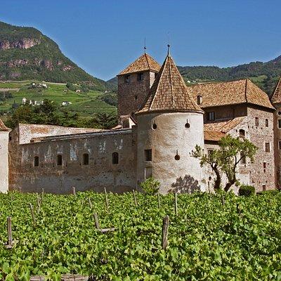 Schloss Maretsch - von Weinreben umgeben  Castel Mareccio - circondato da vigneti