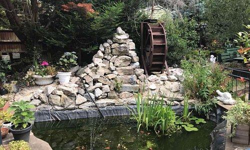 Our Garden side