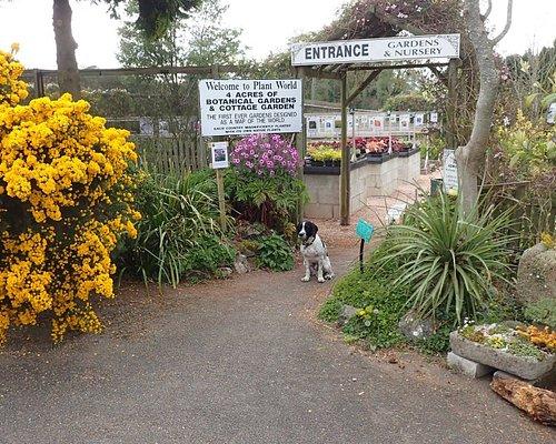 Nursery and garden entrance.