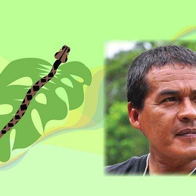 EcoselvaPepeTapia