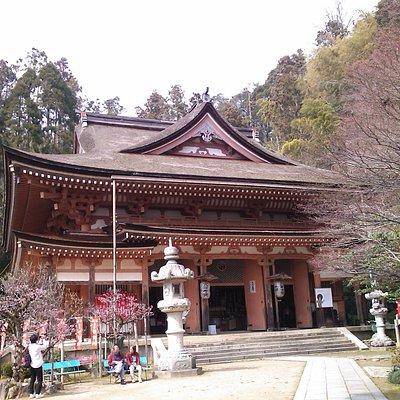 The Main Building of Hongo-ji Temple