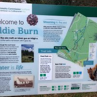 welcome to aldie burn