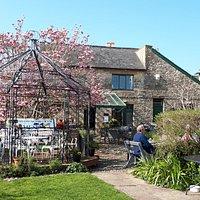 The Arts Cafe garden (2)