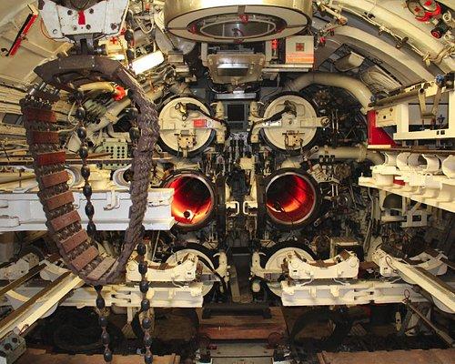 Torpedownia