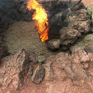 La vegetación arde inmediatamente tras ser introducida a escasa profundidad por el personal del parque.