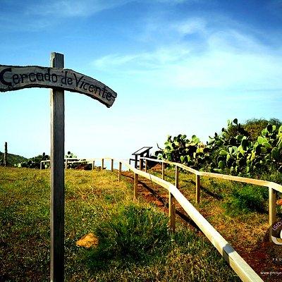 Petroglifos 'El Cercado de Vicente'