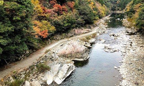 月ケ谷温泉村キャンプ場