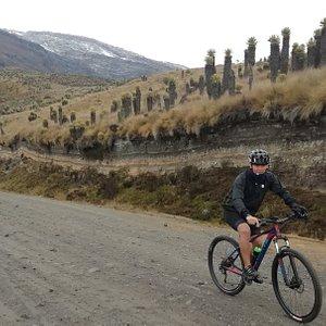 Nevado del Ruiz y Frailejones. MTB a 4000 msnm.