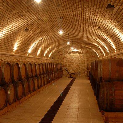 Underground wine cellar.