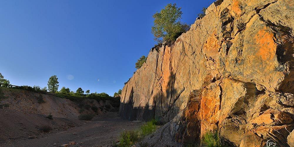 Bosque Fósil de Verdeña. La pared donde estaba asentado mide 150 metros de largo y 18 de alto y fue descubierta accidentalmente durante una excavación de carbón a cielo abierto que se realizaba en la zona años atrás.