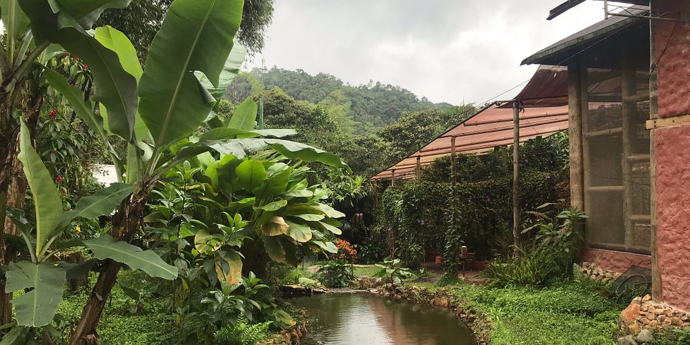 Beautiful garden to explore