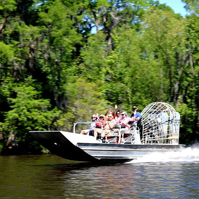 Our clients have a blast on our New Orleans Swamp Tours!