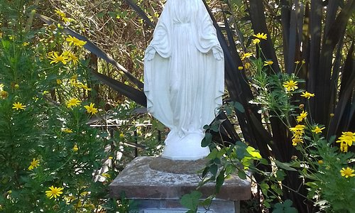 Imagen de María en parque
