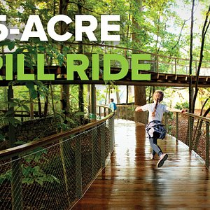 Explore 75 acres of outdoor adventures, including a canopy walk, adventure fort, play areas, a pollinator meadow, a boardwalk, and an old-growth Piedmont forest.