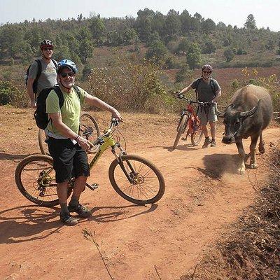 Biking in dry season in the hills outside Kalaw, Shan State, Myanmar