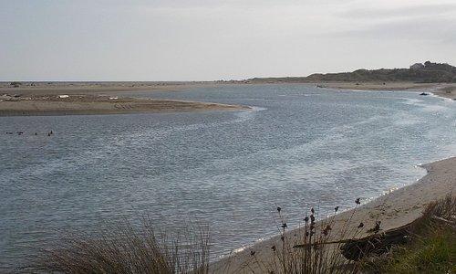 The estuary looking towards the sea