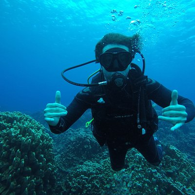 Buceo en las cálidas aguas de Rapa Nui