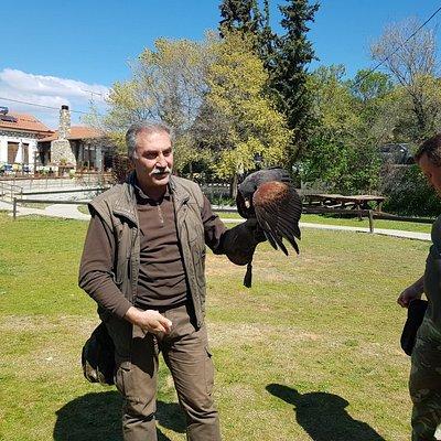 Πάρκο Αρπακτικών Ημερόβιων και Νυκτόβιων Πτηνών