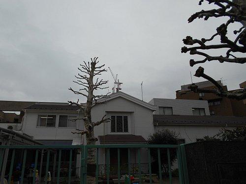 四谷新生教会