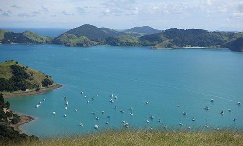 Мой любимый полуостров Coromandel, New Zealand