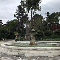 Glicine sullo sfondo della fontana
