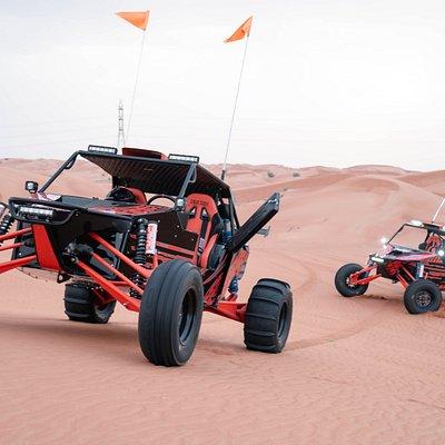 Our brand new 2019 Desert Fox dune buggy