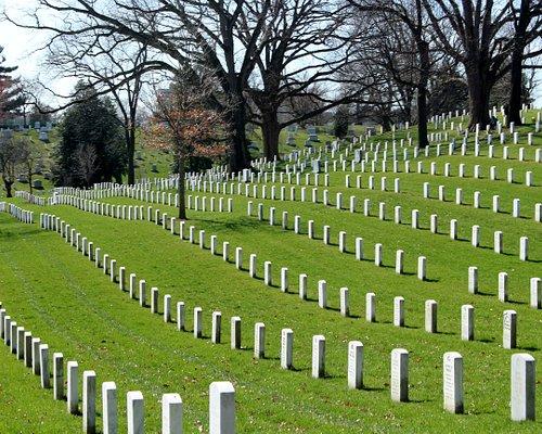 rows of headstones