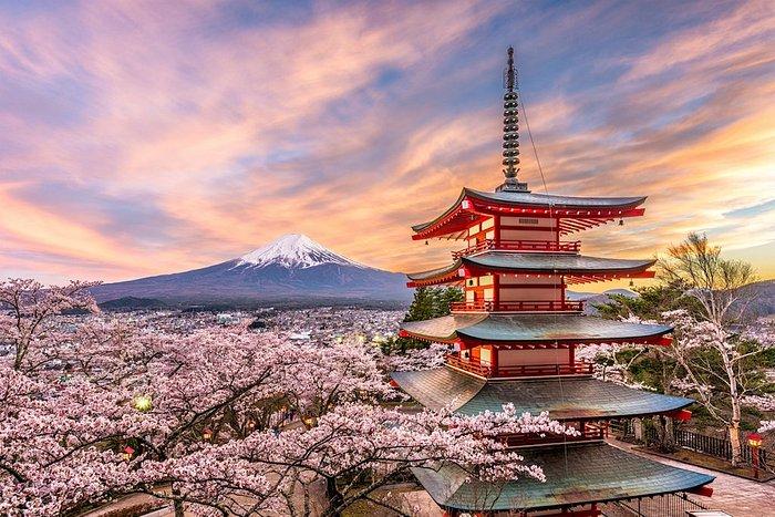 """Con la primavera in Giappone arriva la magia della fioritura, il periodo dell'anno in cui i nipponici (e sempre più turisti) praticano l'""""hanami"""", ossia """"l'arte di osservare i ciliegi in fiore"""". In Giappone si possono trovare più di duecento varietà di alberi di ciliegio (""""sakura"""", in giapponese). La più popolare è lo Somei Yoshino: i suoi fiori sfumano dal bianco al rosa pallido. Il momento di massima fioritura è stabilito ogni anno dall'Agenzia meteorologica giapponese. Pronti a partire?"""