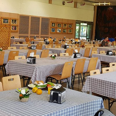 The communal dining room at Kibbutz Kfar Masaryk. Join us for breakfast or lunch with members of the Kibbutz.